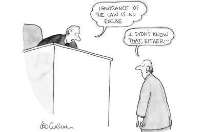 —La ignorancia de la ley no es excusa. —¡Pero tampoco sabía eso!