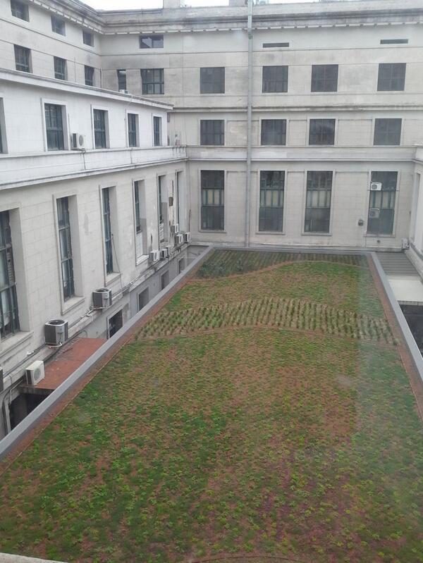 Terraza verde en UBA derecho