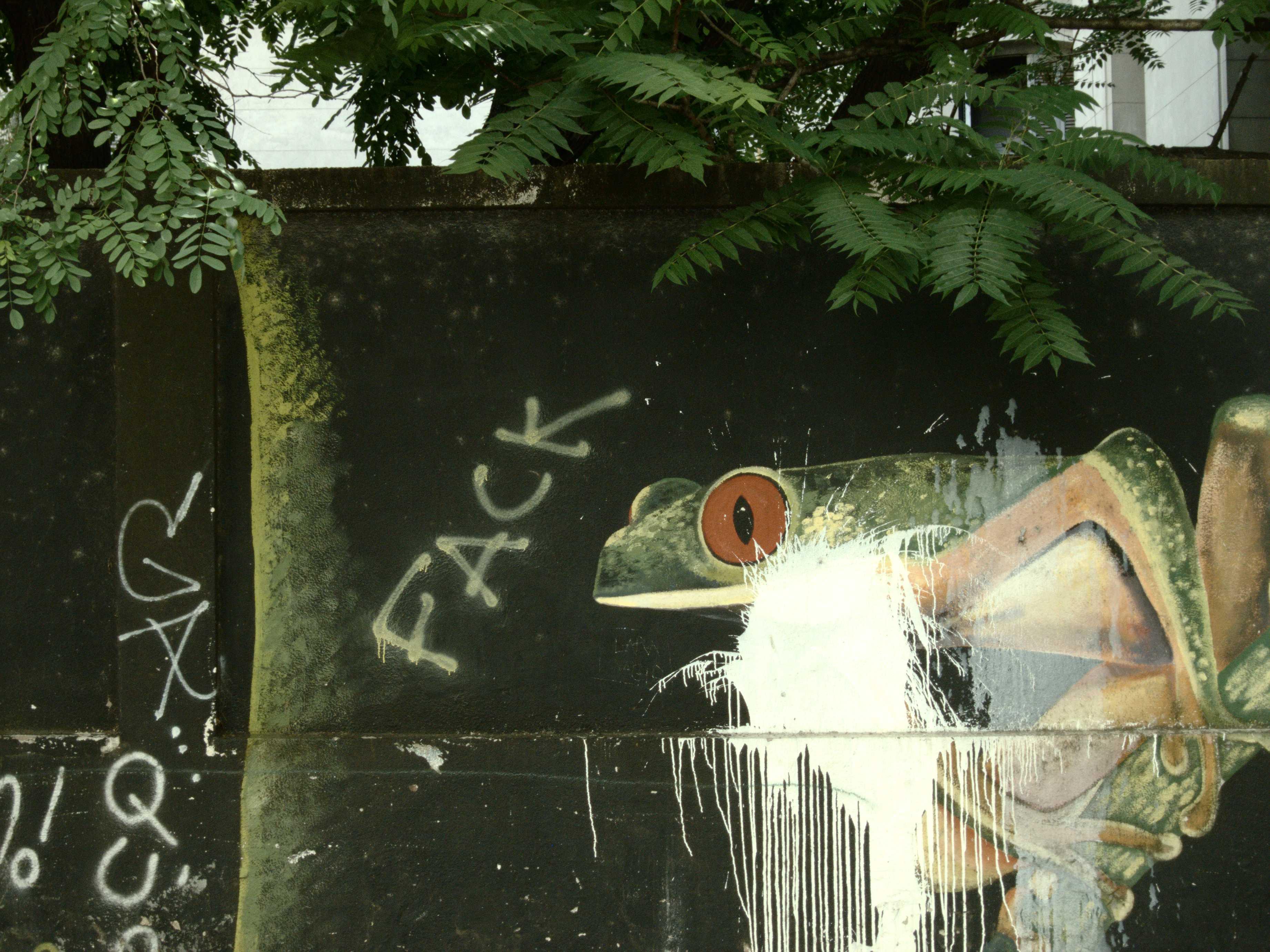graffiti-frog